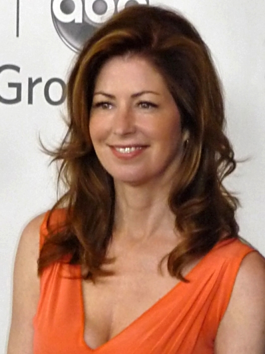 Dana_Delany 15 Celebrities Who Have Aged Well