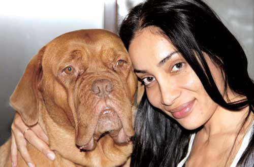 sofia hayat plastic surgery, sofia hayat plastic surgery before and after photos, sofia hayat plastic surgery breast augmentation, sofia hayat plastic surgery lip surgery, sofia hayat plastic surgery nose job2